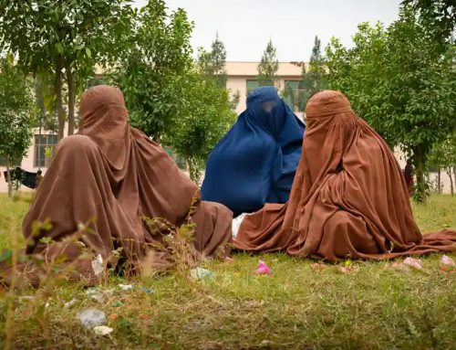 Afghan Wives of ISIS Fighters
