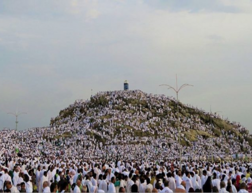 Arafah.. the day of mercy and forgiveness